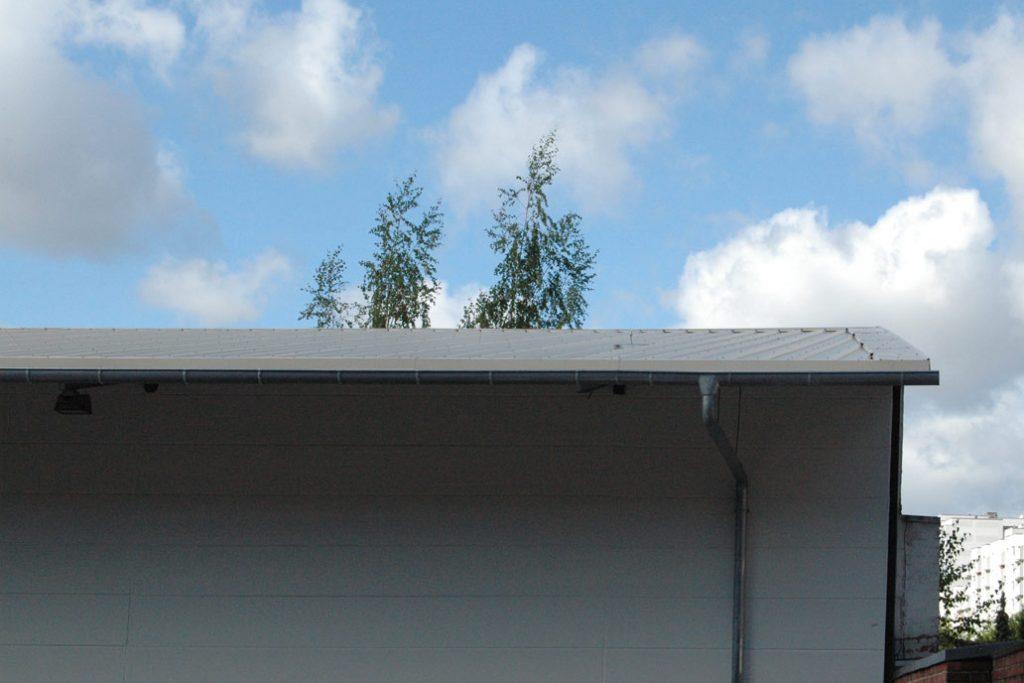 Saniertes Hallendach mit einem Anbau eines Dachüberstands.