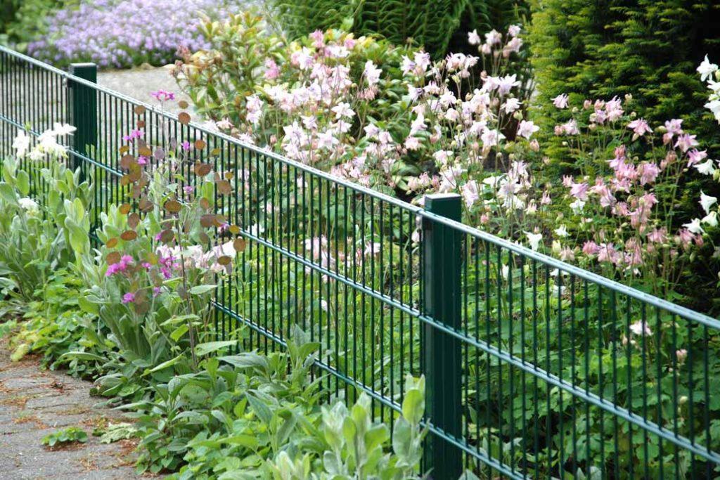60 cm hoher grüner Stahlmattenzaun vor einem Garten mit blühenden Akeleien.